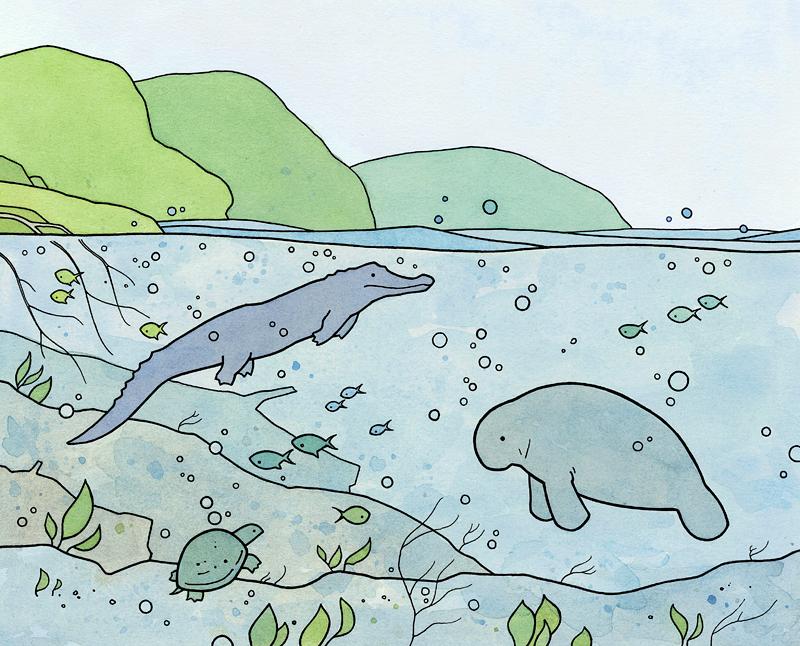 amazon underwater art
