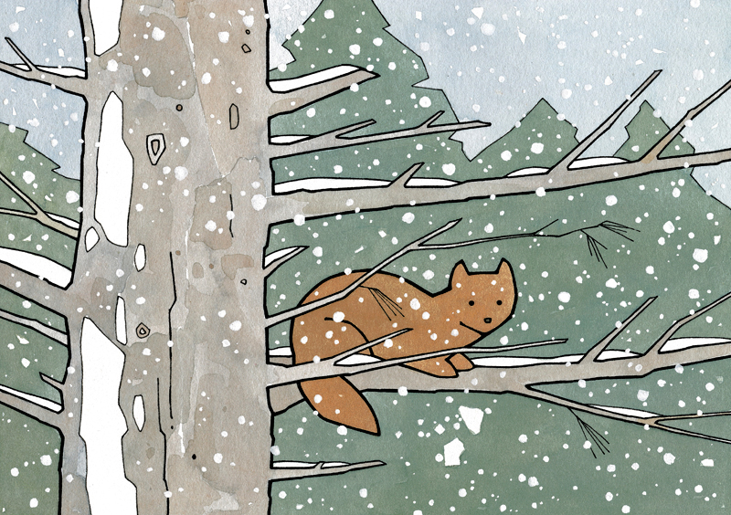 Pine marten drawing - studio tuesday