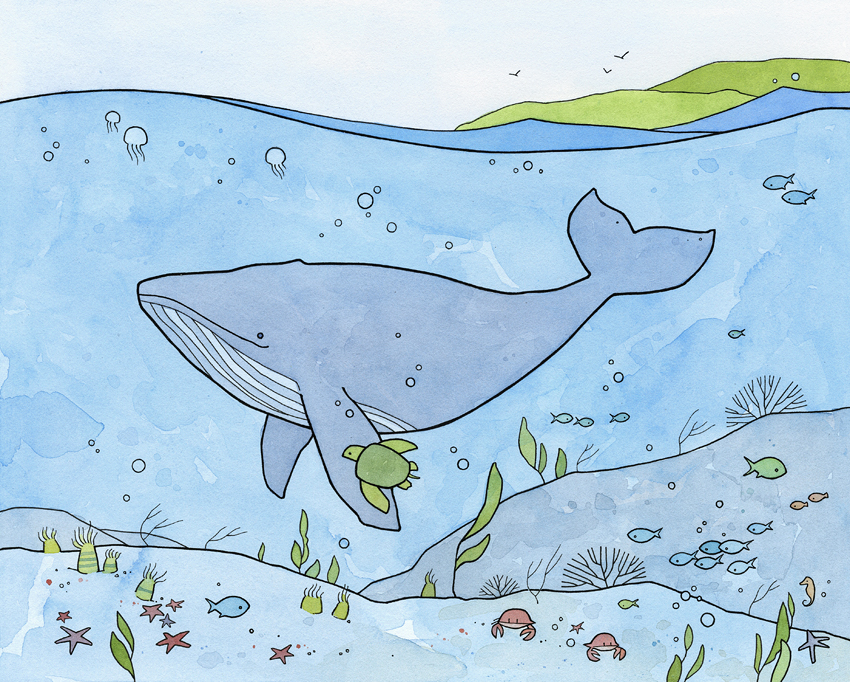 whale drawing - studio tuesday