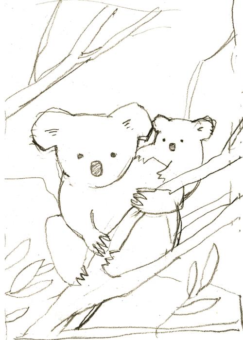 koala-sketch.jpg