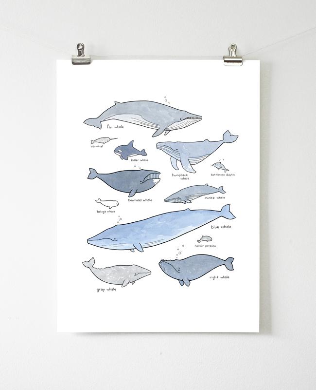 whales nursery print