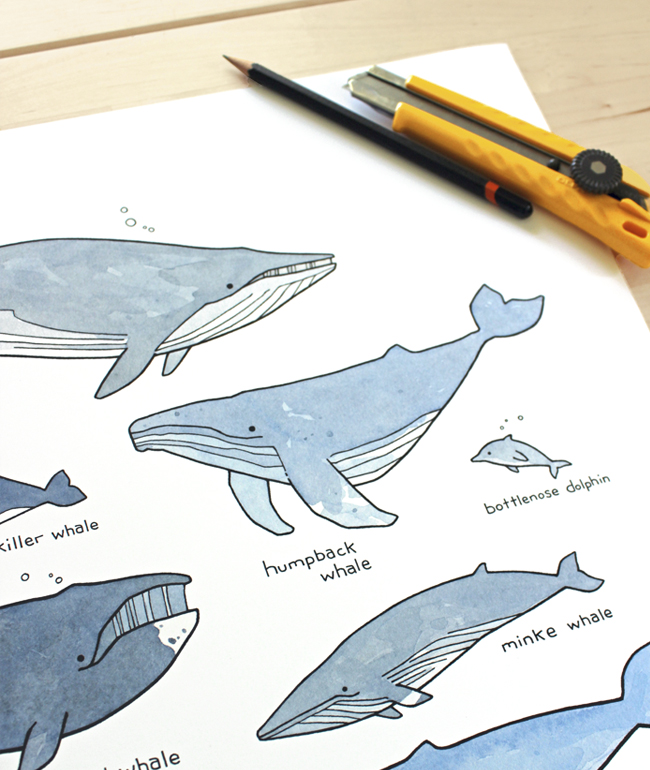 whales drawing print
