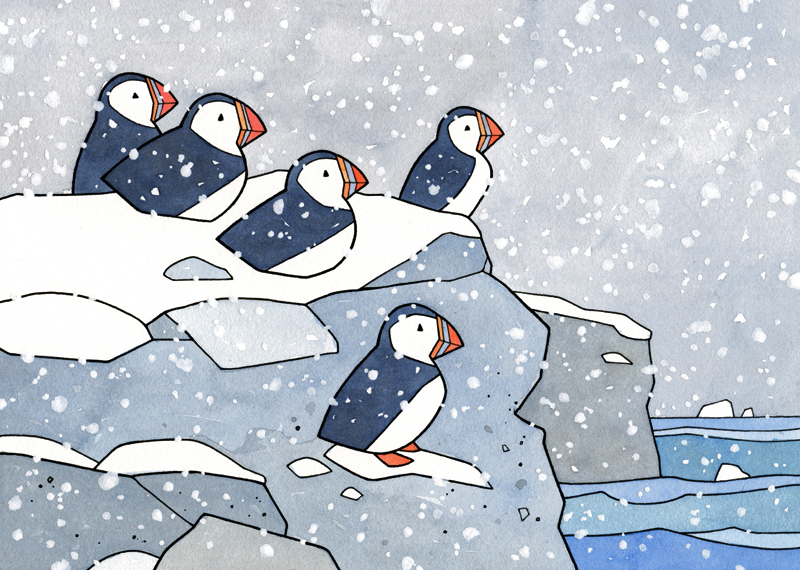 Puffins in snow illustration Card set available here