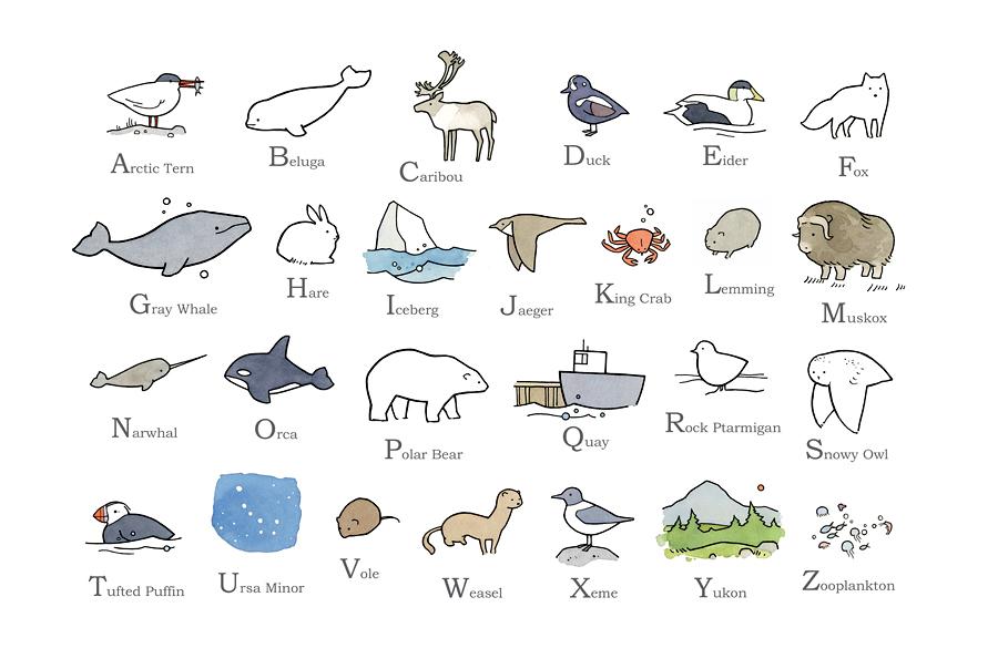 Illustrated Arctic Alphabet