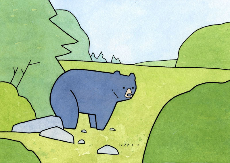 Black Bear illustration Buy Black Bear Print