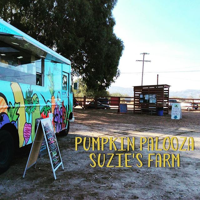 It's Pumpkin Palooza Time @suziesfarm  We are here till 2pm Come pick your pumpkins, veggies and some yummy juice. #suziesfarm #pumpkinpalooza #sandiego #farmtotable #farmlife #sippinonzenandjuice