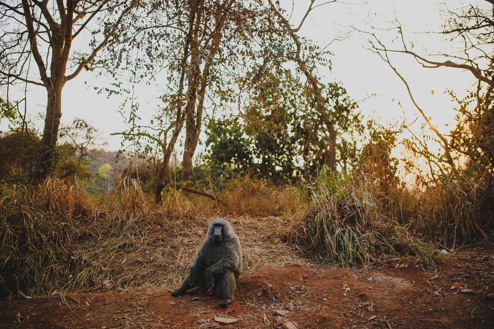 Travel_Uganda-003.jpg