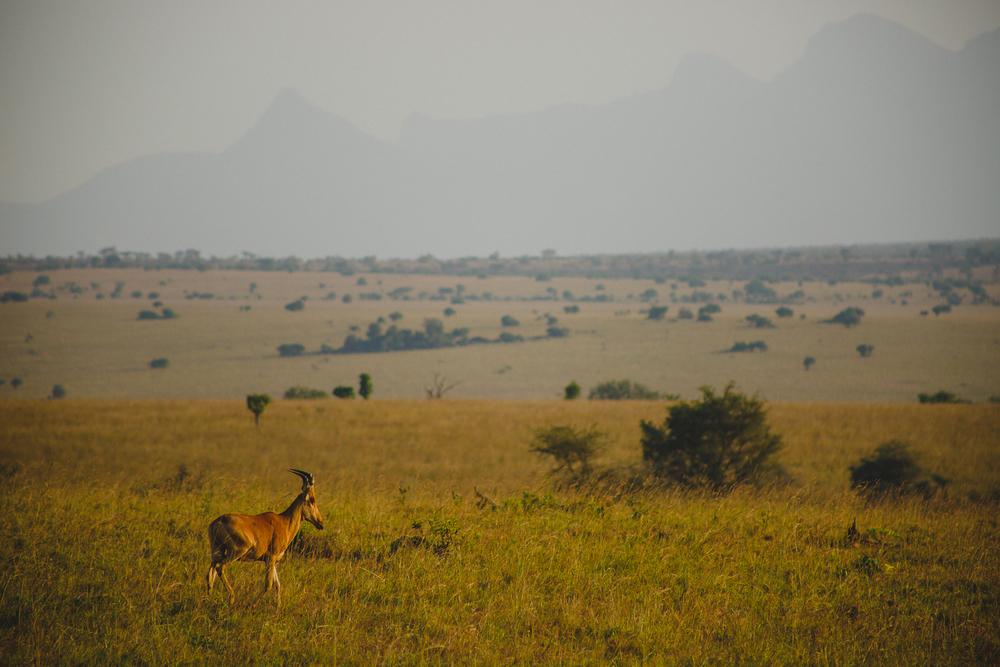 Travel_Uganda-015.jpg