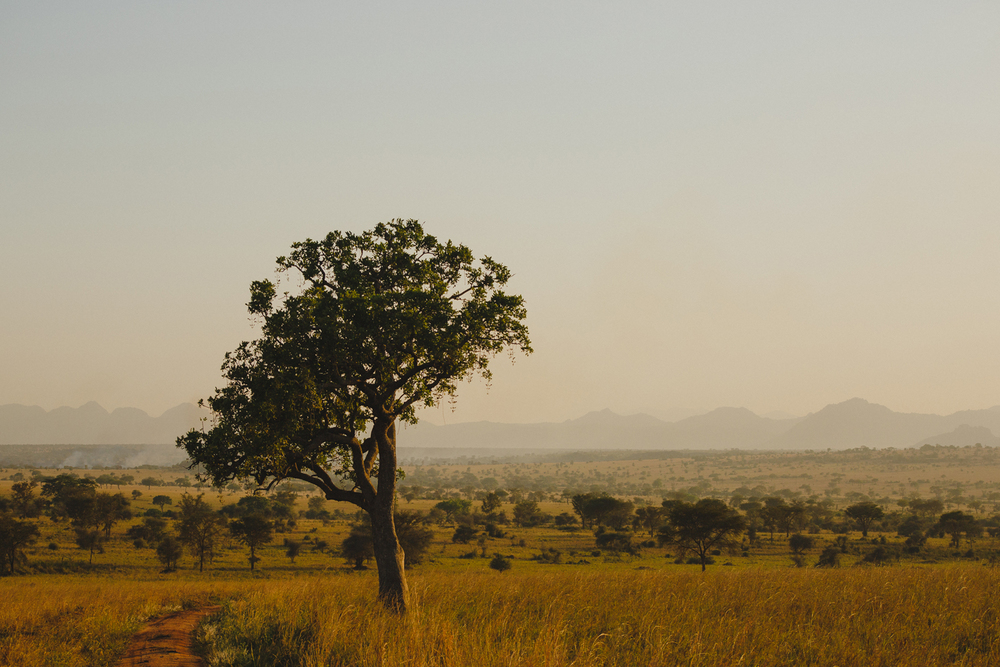 Travel_Uganda-016.jpg