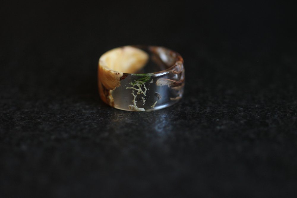 Maple Burl, Pinecone, and Moss.  Forest in a ring.
