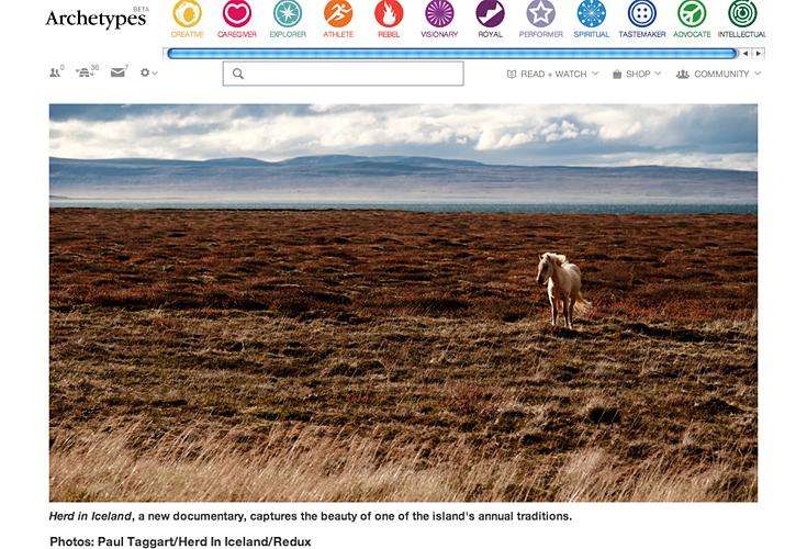 Herd In Iceland