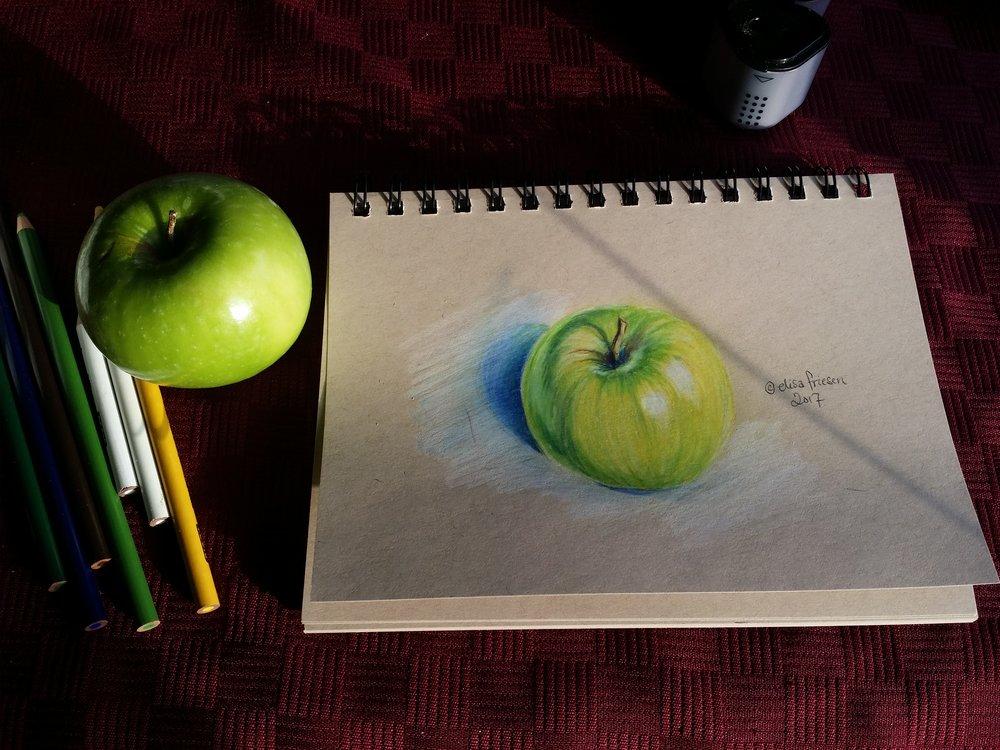 0674 apple study elisa friesen 2017.jpg