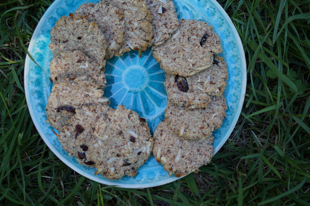 Almond Pulp Cookies with Coconut and Cranberry