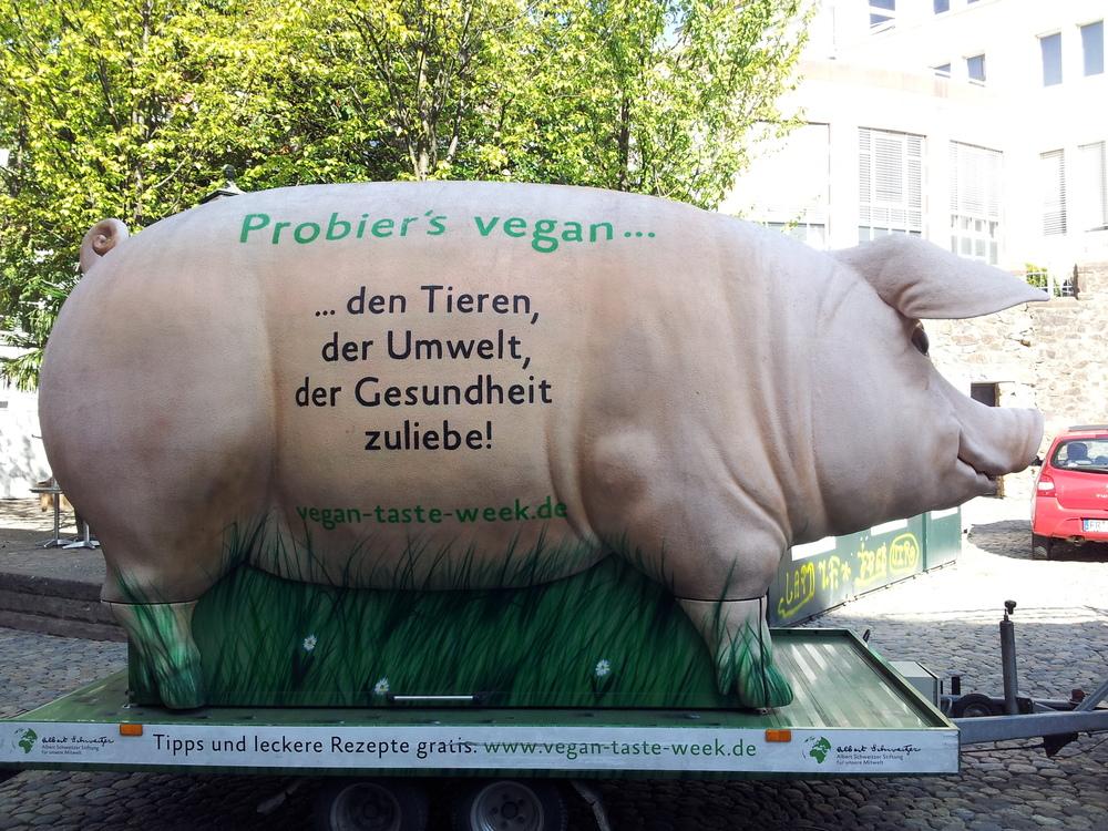 Try it vegan!