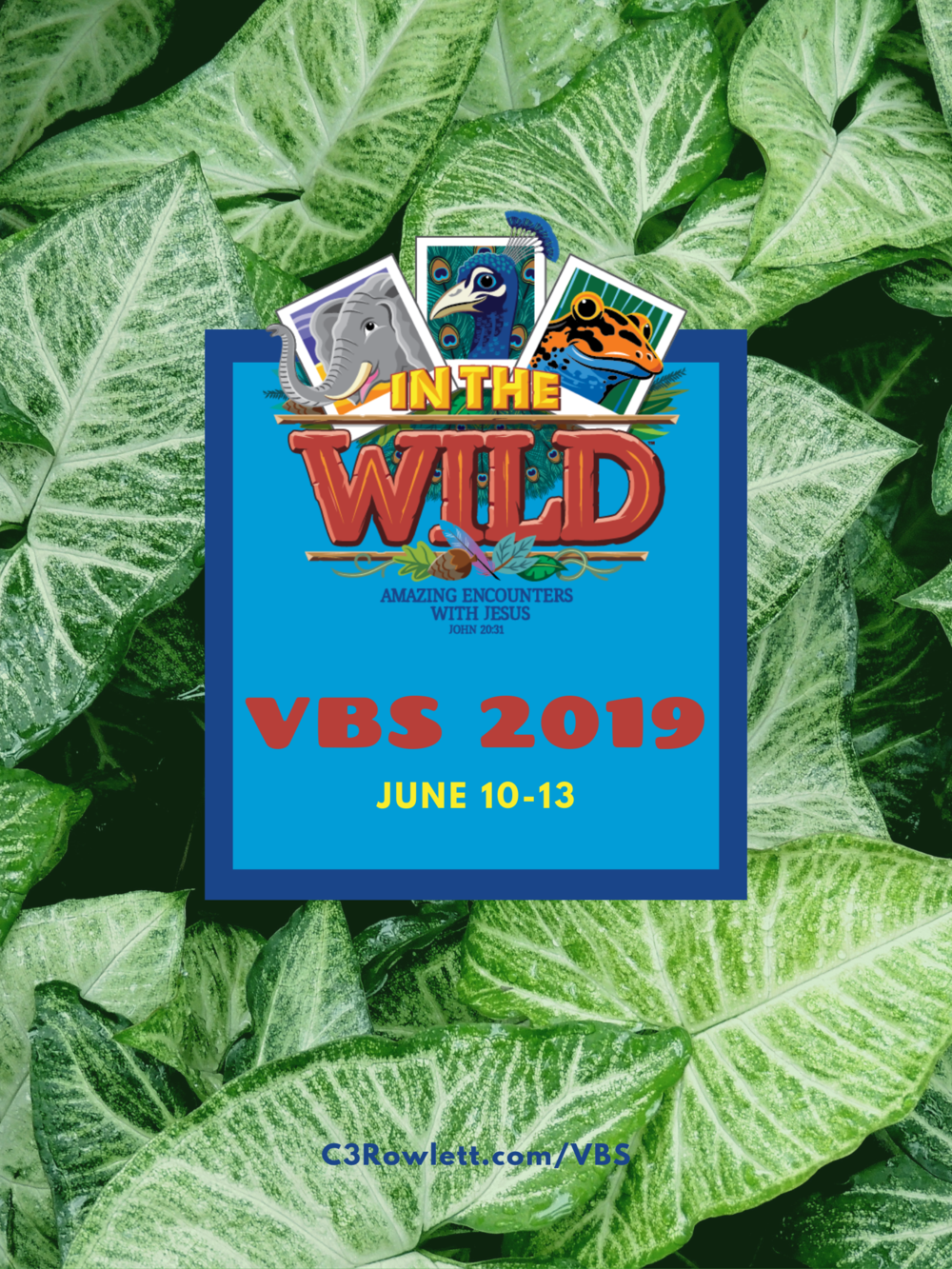 vbs2019 poster.png
