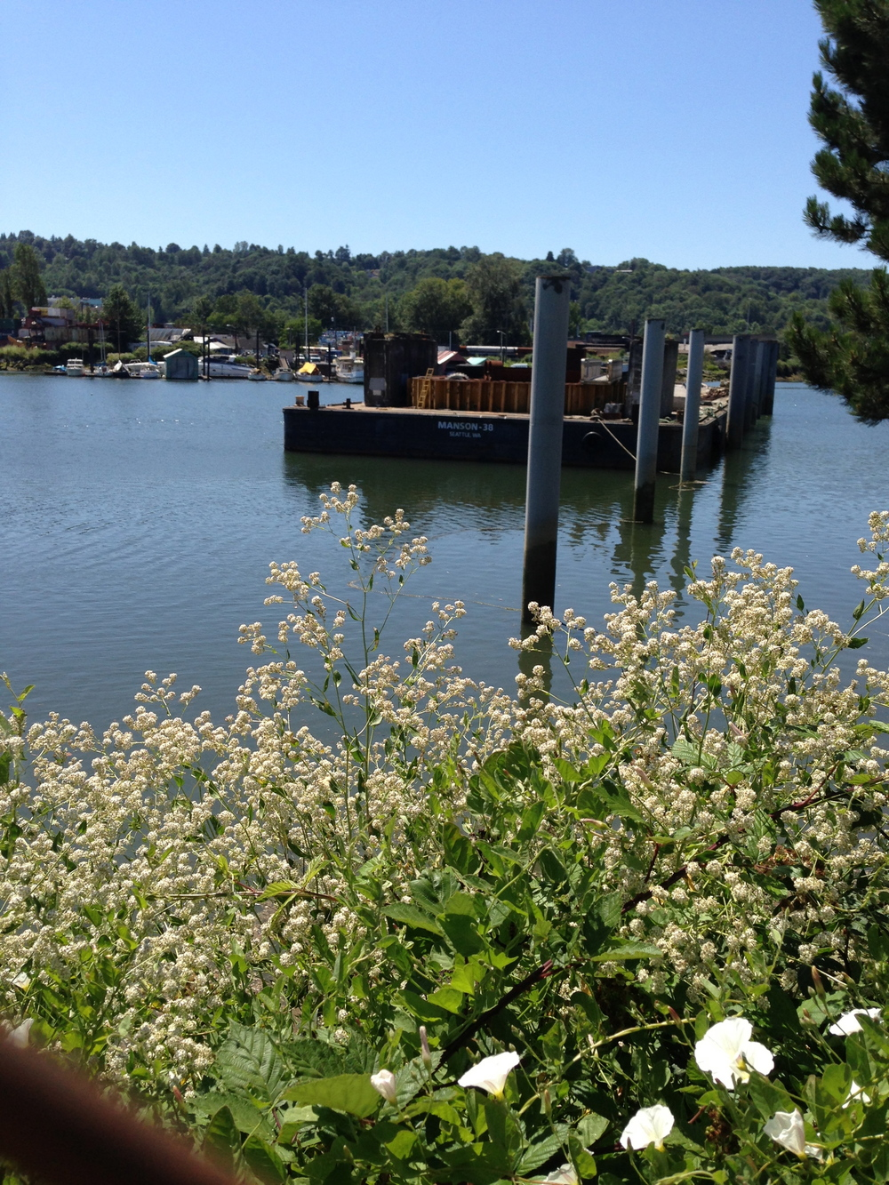 Along the shores of the Duwamish River exist an eclectic mix of green bels, industry and neighborhoods.
