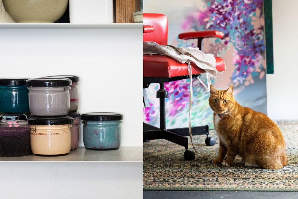 Studio detail and cat portrait.