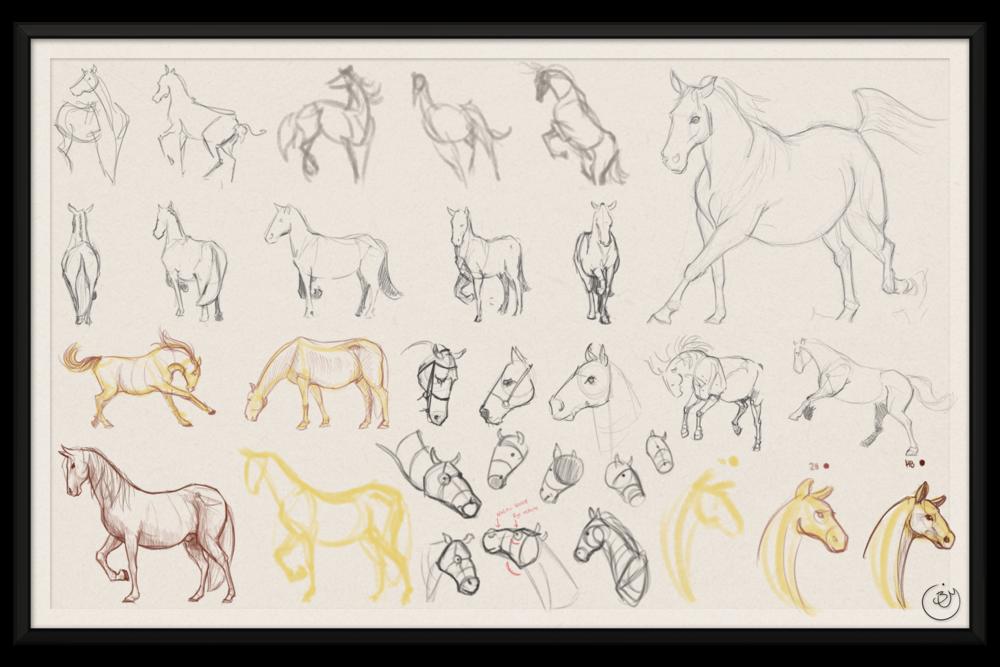 BenMiller_HorseSketch-Gestures-1500px.png