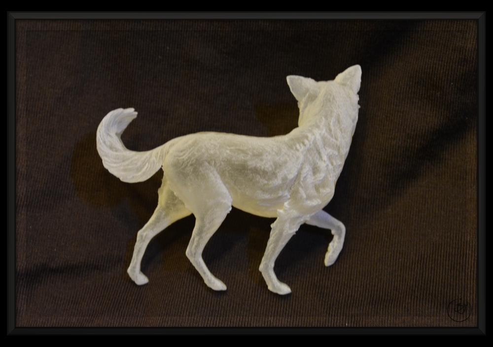 BenMiller_Dog-Back-1500px.png