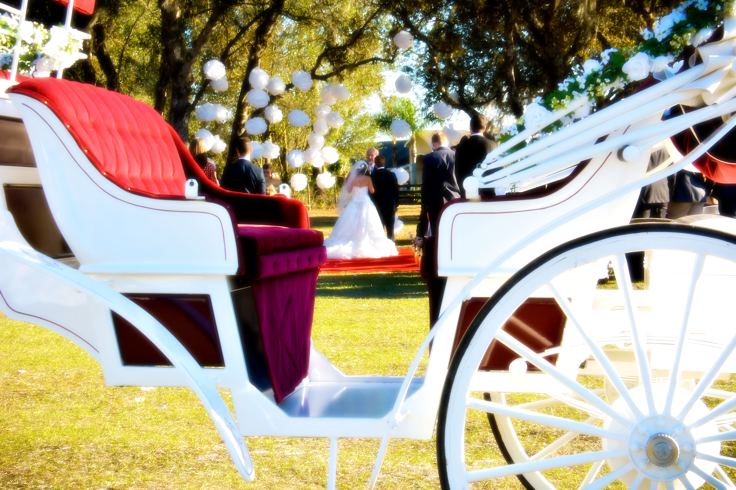 Orlando Horse Carriage