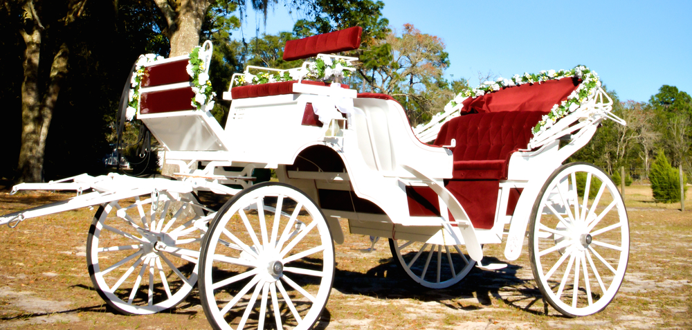 Our horse drawn carriage will be appropriately decorated for your event and custom colors can be available upon request.  For evening events, our carriage comes fully equipped with warm white LED under carriage lighting and soft white side lamps.  Our goal is to accommodate your every request!