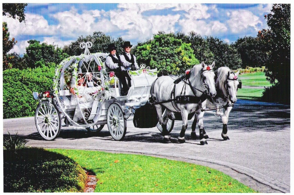 Cinderella Carriage - Available for booking as of January 1, 2015!