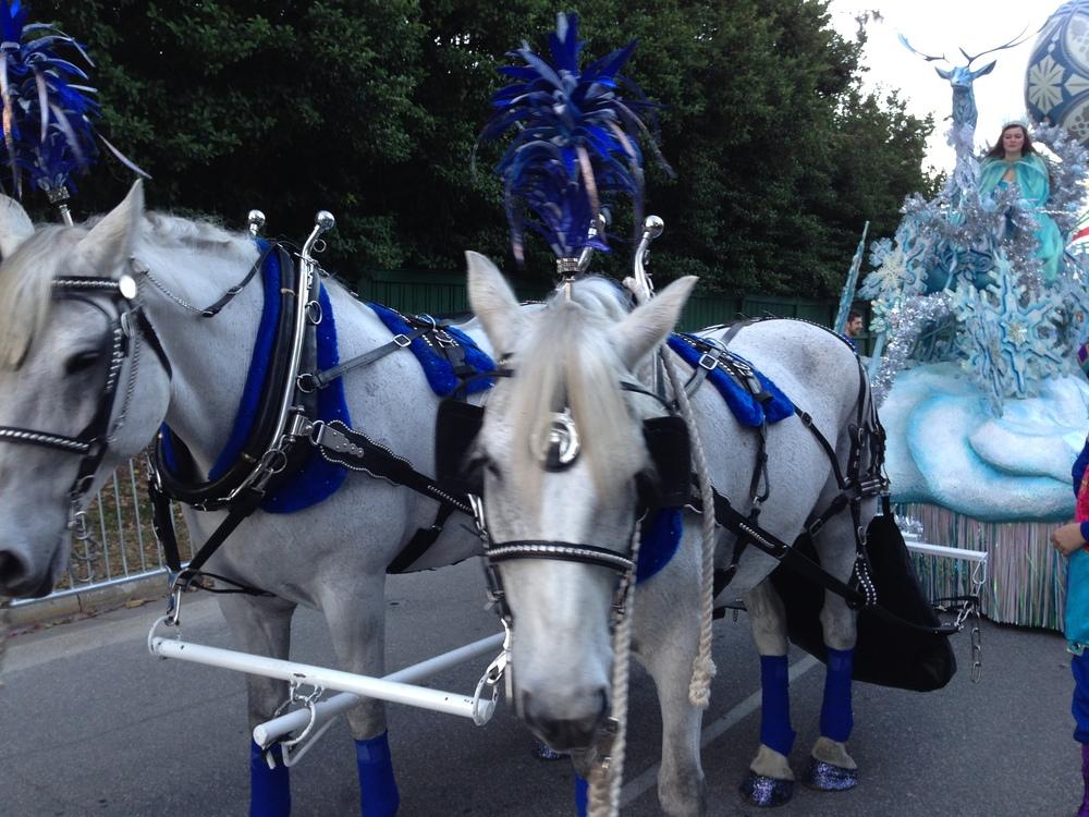 Macy's Christmas Parade, Universal Orlando