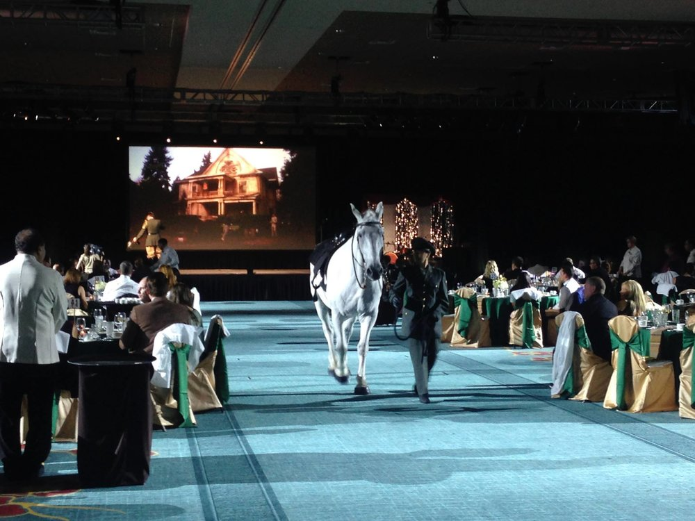 Bringing a horse into a hotel can present some challenges, however, when asked by   Universal Orlando   to incorporate a horse into their reenactment of that famous scene from the movie Animal House (  Only We Can Do That to Our Pledges  ) our team was up for the challenge.  You can only imagine the astonished looks we received from hotel guests at the    Loews Royal Pacific Resort   as they witnessed Prince William, an 1800lbs Percheron draft horse who's heart is as big as he is, strut his stuff through the front door, across the lobby and into the the convention center at their hotel.  The trust, mutual respect, and what the heck…  over 20 years of experience bring to the table.  What an amazing group to work with!