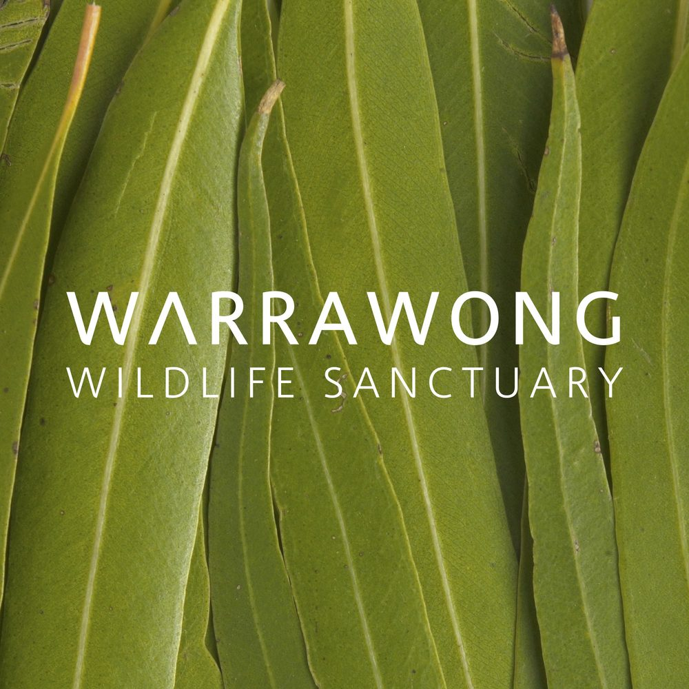 Warrawong Wildlife Sanctuary >