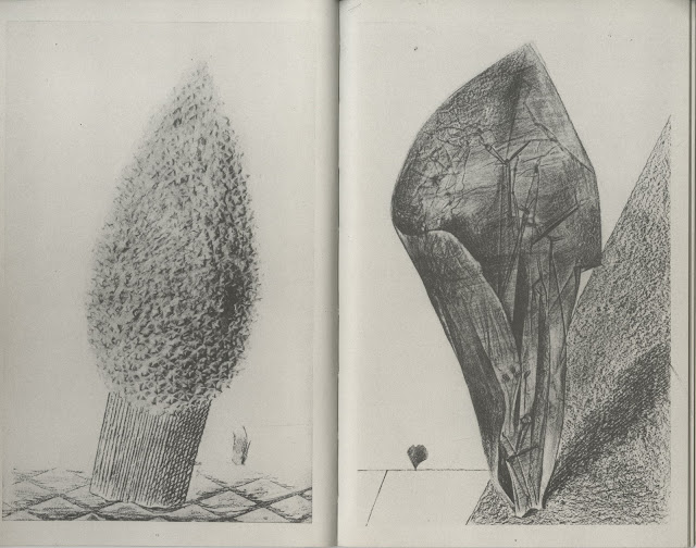 Quelle: http://despinarangou.blogspot.ch/2012/12/natural-history-book-by-max-ernst.html