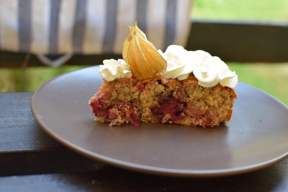 A ještě něco, tento dort se běžně dělá s brusinkami, ty jsem ale neměla.