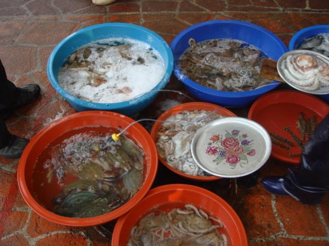 z rybího trhu