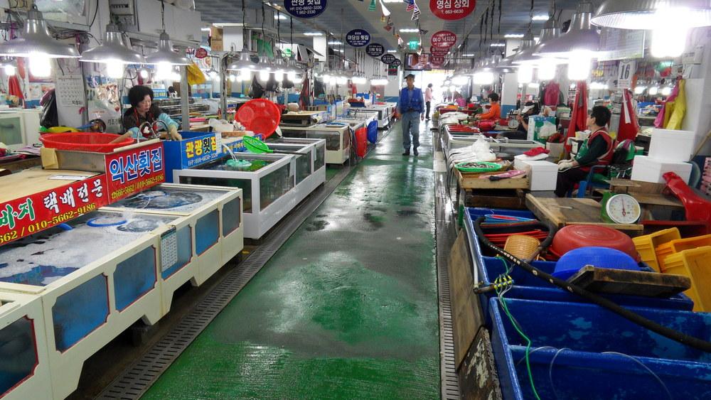 sashimi stánky na rybím trhu