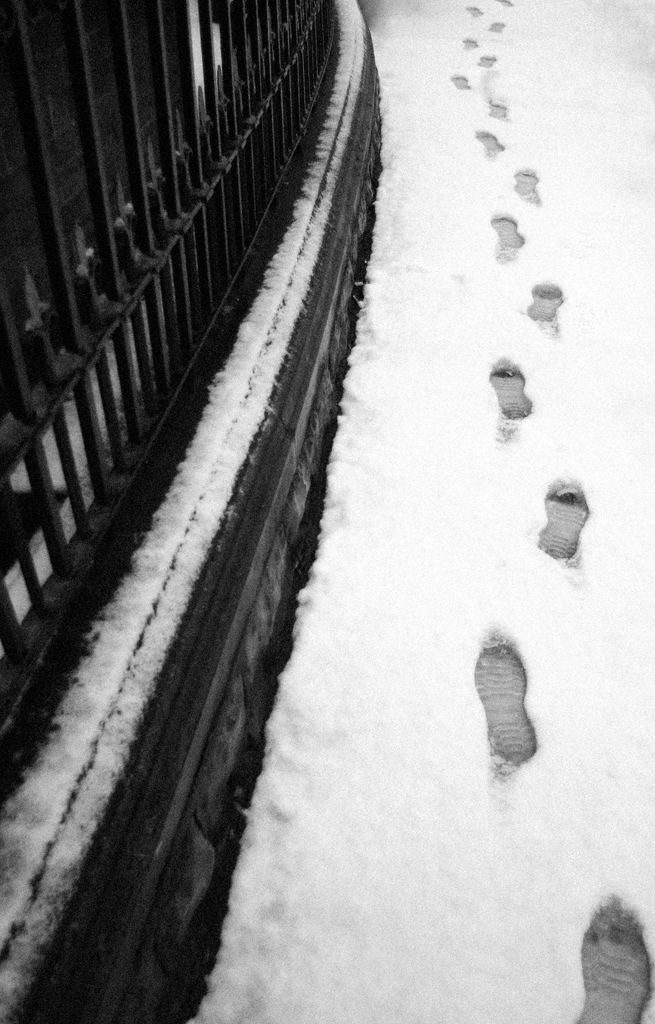 Snow Steps