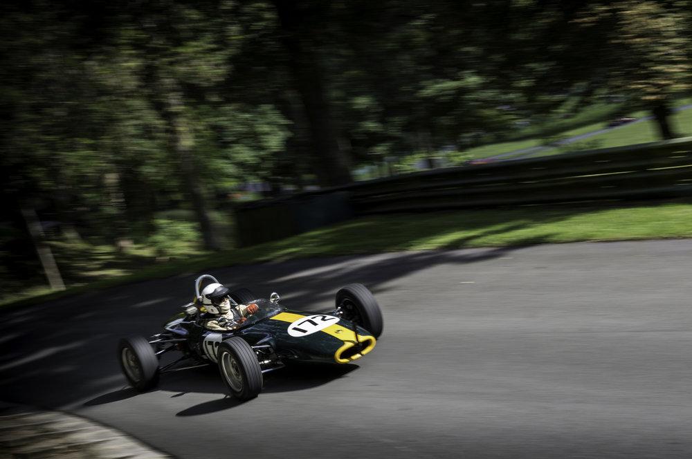 Fav Lotus.jpg