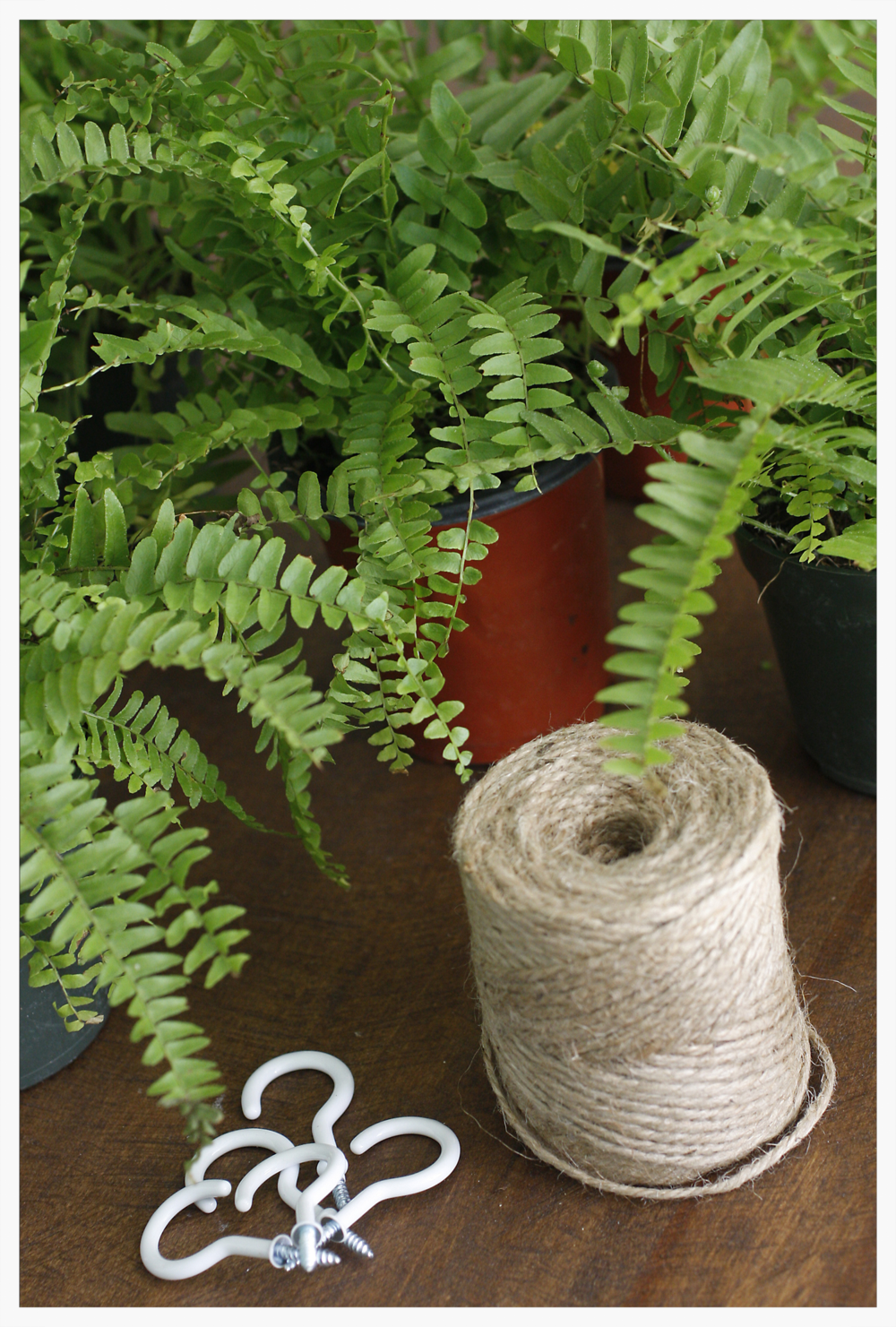 I used twine to make plant hanger by wrapping it around the bottom of the plastic pot. You could also poke two holes at the top with scissors and  tie each piece of twine together at the top to make the loop for the hooks.