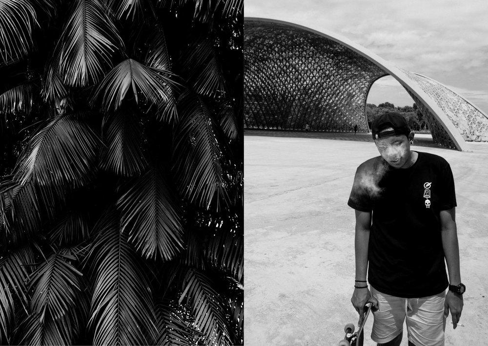 jungle urbaine4.jpg