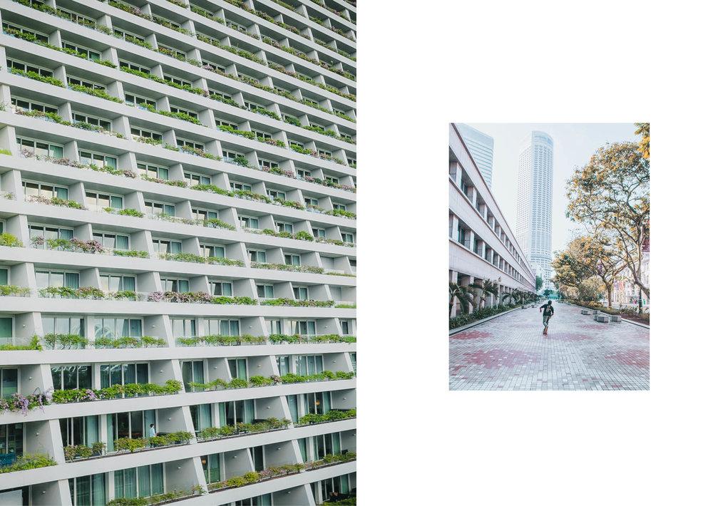 jungle urbaine7.jpg