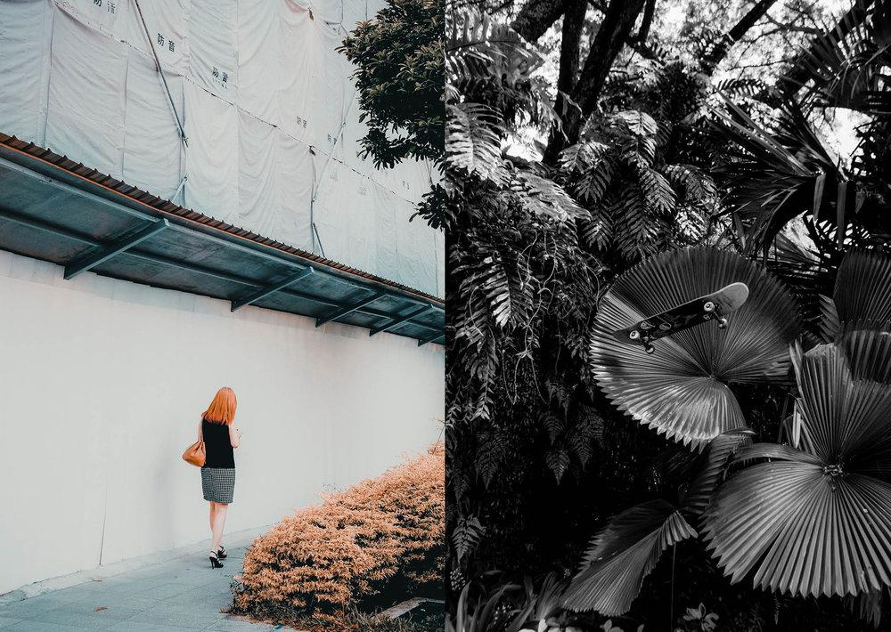 jungle urbaine8.jpg