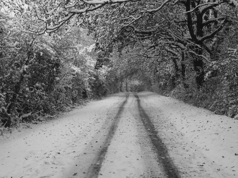 Aldsworth Common in the snow - Authors own image