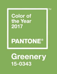 Image Source: Pantone
