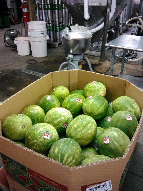 Fresh watermelons to be added to beer