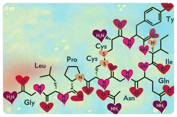 Chemical Formula for  Oxytocin