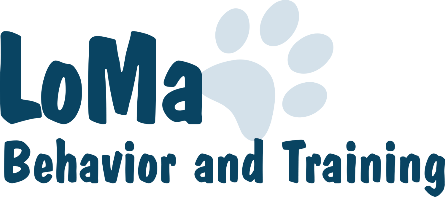 San Antonio Dog Training