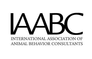 iiabc logo.jpg