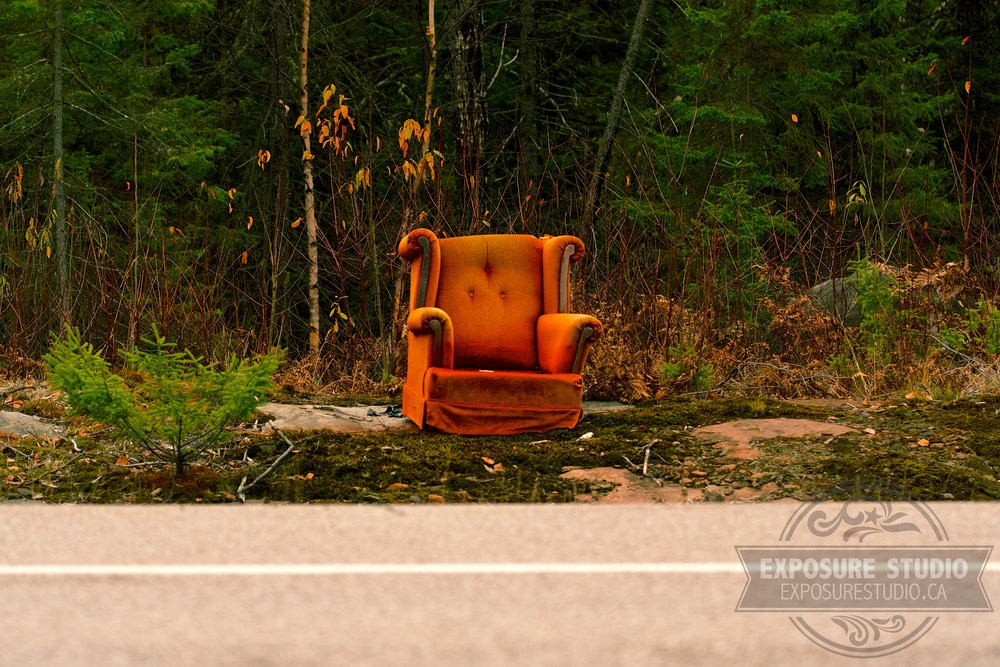 """Forest Lounger"""