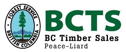 BCTS logo.jpg