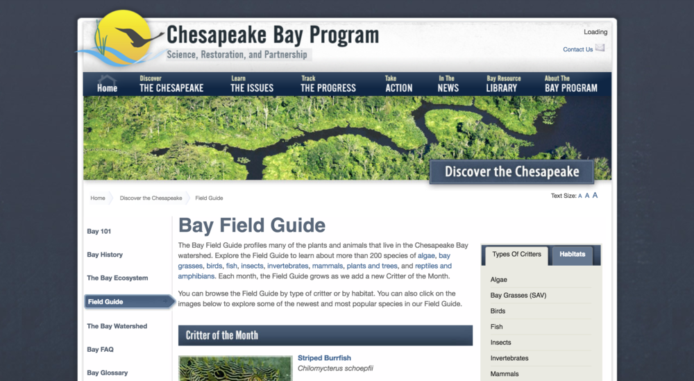 (chesapeakebay.net via archive.org)