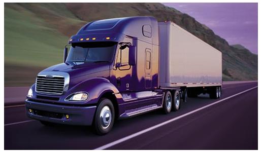 Rigel Logistics Orion Taxidermy