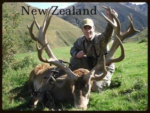 New Zealand.jpg